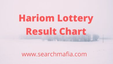 Photo of Hariom Lottery Result Chart Live – Searchmafia